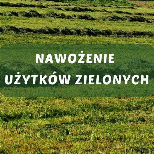 Łąki i pastwiska.