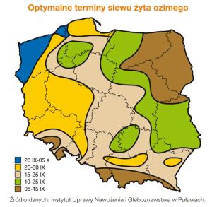 terminy-siewu-zyta