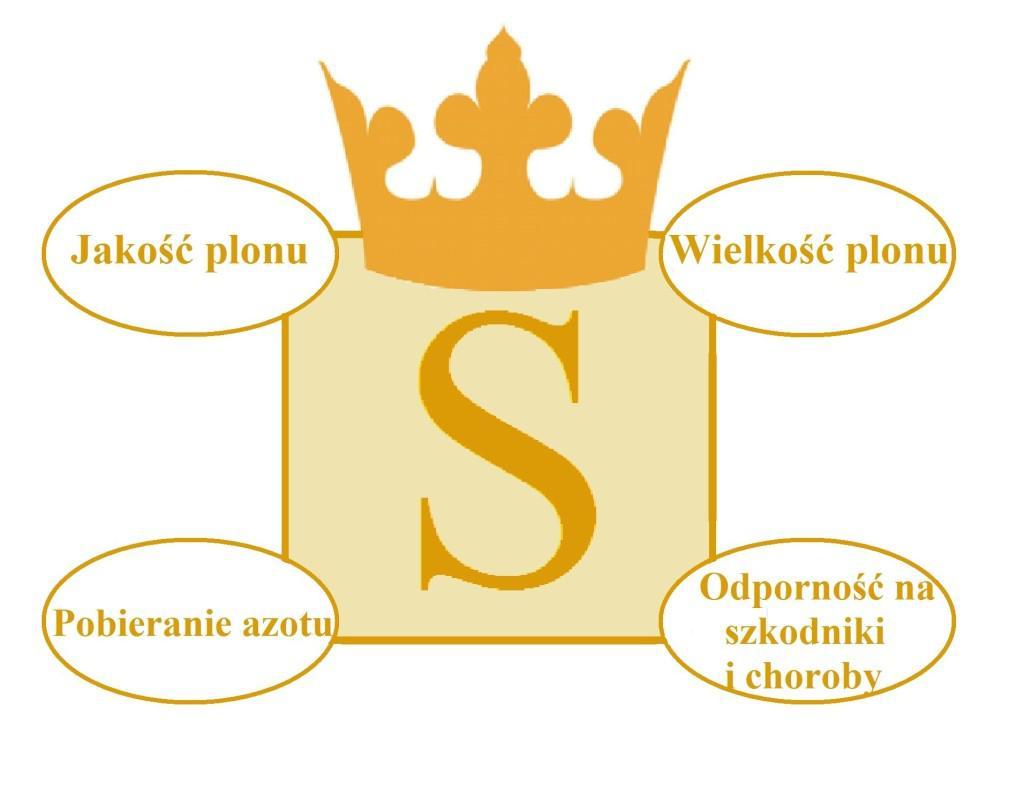 siarka (2)