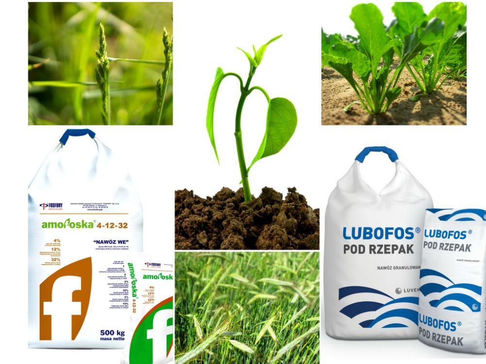 Makro i mikroskładniki dla roślin.